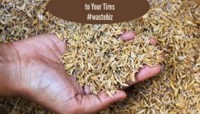 rice husks as a source of silica for tires