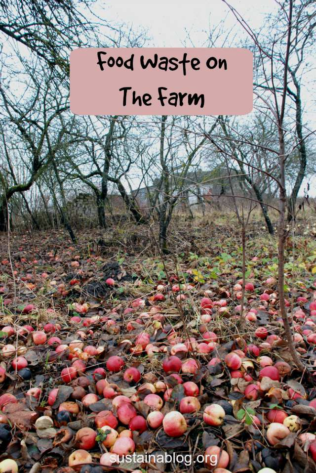 food waste on the farm