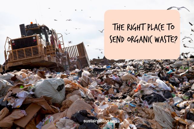 should organic waste really go to the landfill?