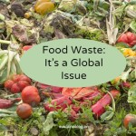 the issue of global food waste