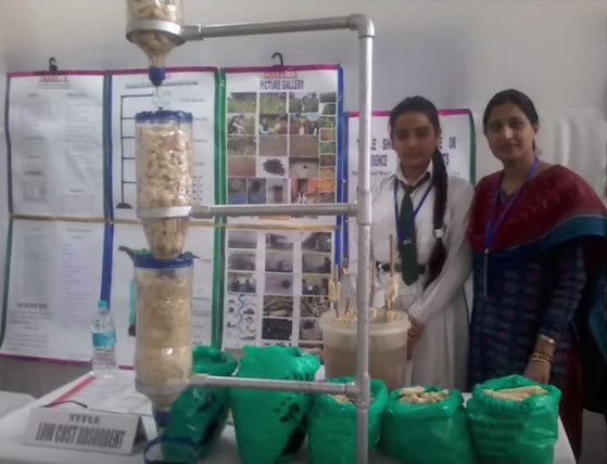 waste water treatment with corn cobs