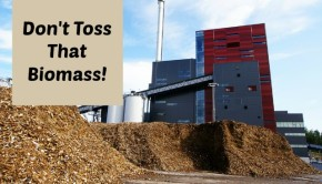 biomass to energy plant