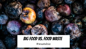 big food vs food waste