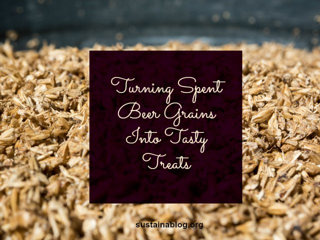 turning spent beer grains into tasty treats