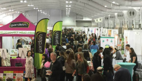 green festival crowd