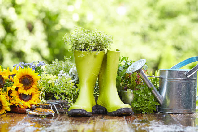 unique planters made from rubber boots