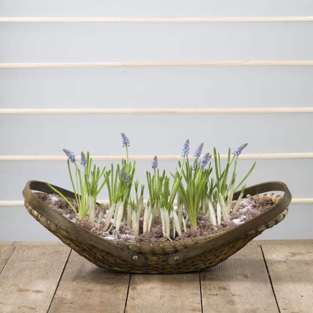 planter from repurposed basket