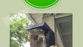 bird feeder made from a log