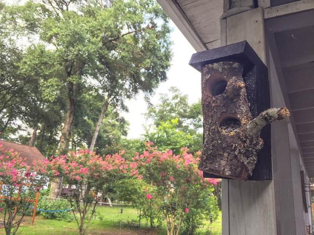 finished bird feeder