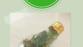turn a light bulb into a terrarium vase